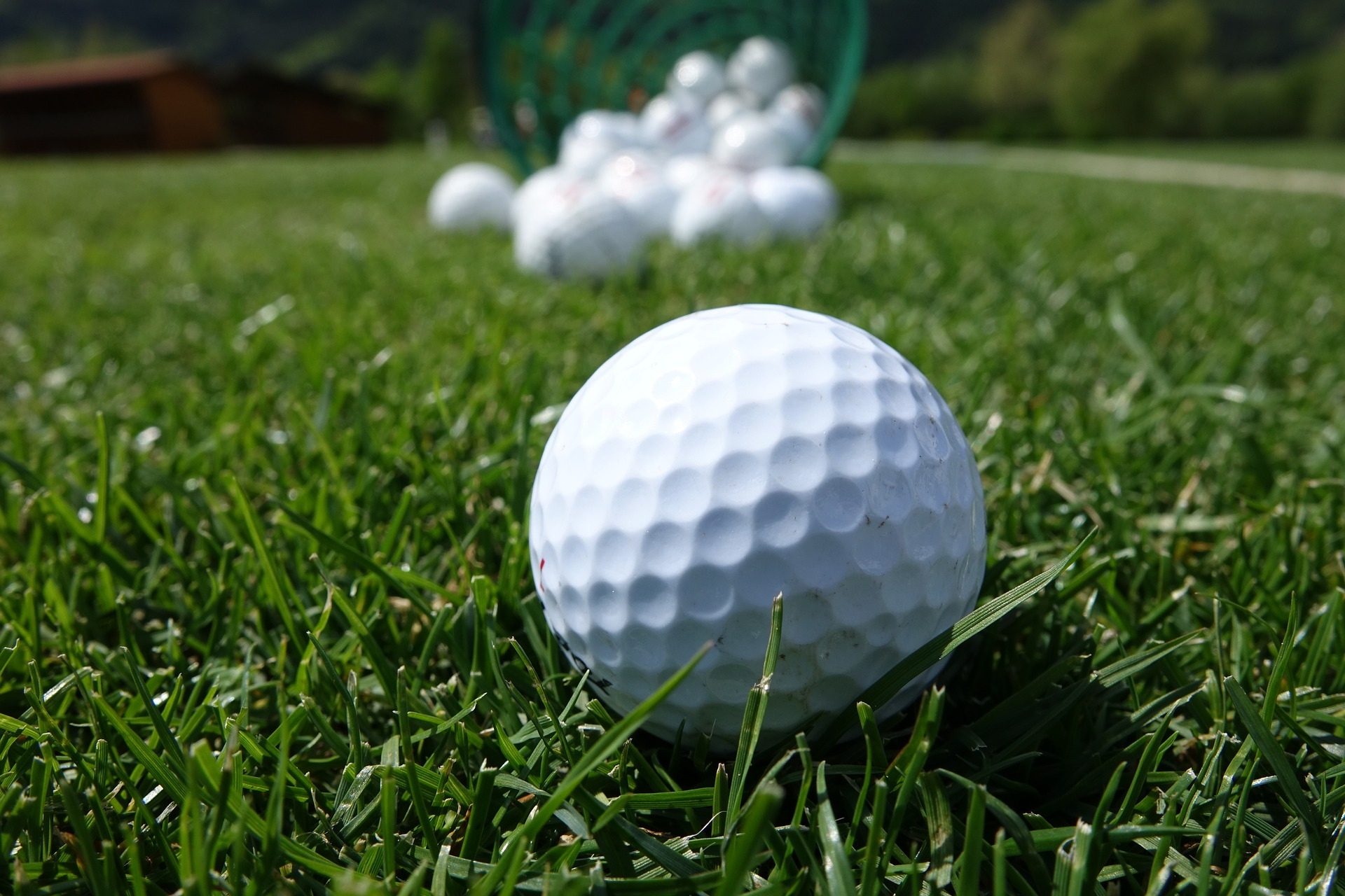 What are the Best Golf Balls for High Handicappers?