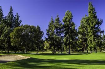Encino and Balboa Golf Courses